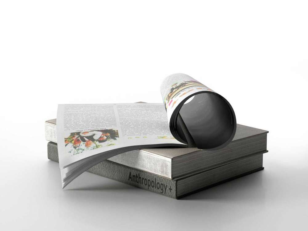 Books with Magazine 3d model
