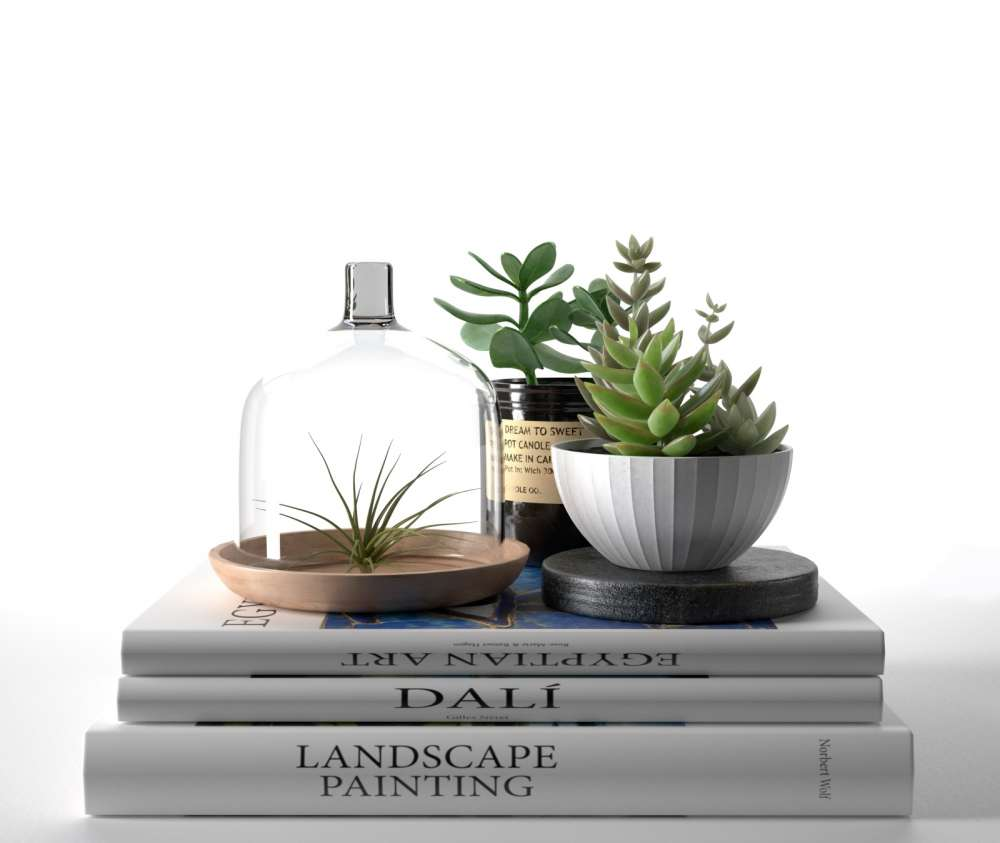 Books with Succulents and Air Plant 3d model