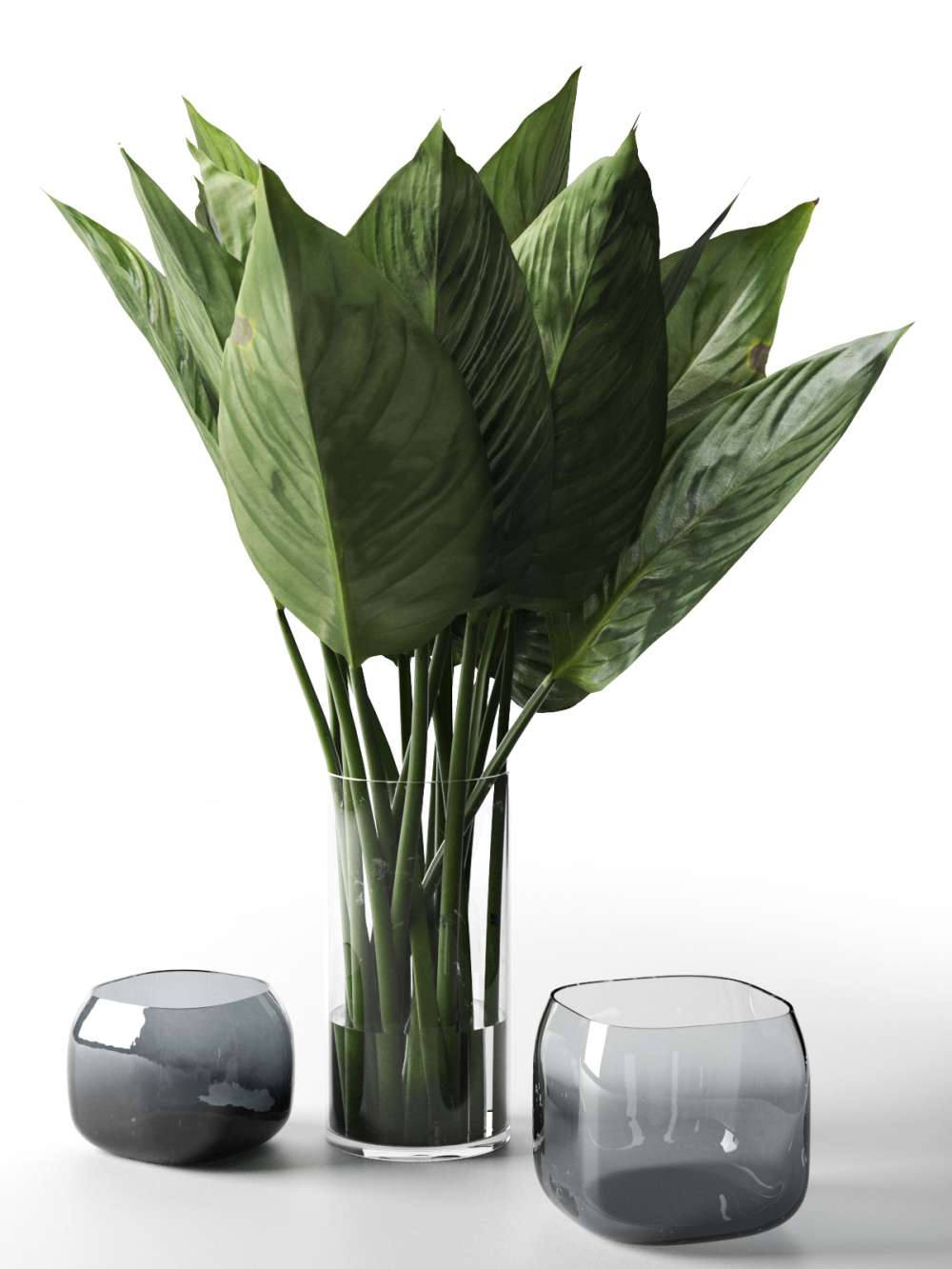 Glass Vases with Leaves 3d model