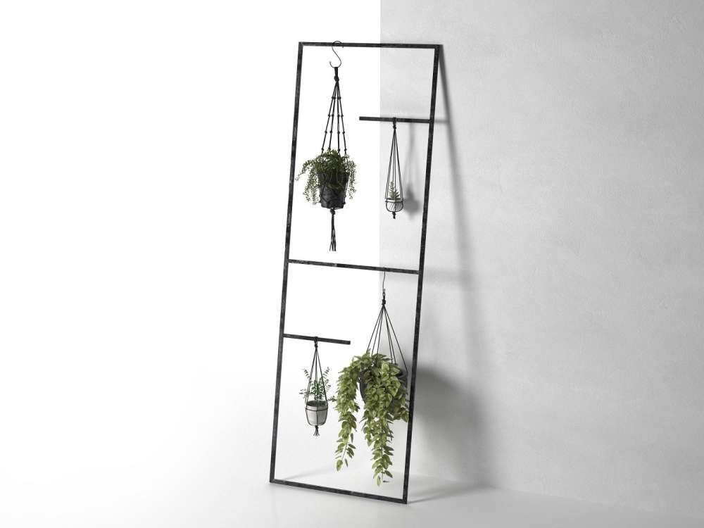Leaning Display Ladder with Hanging Plants 3d model