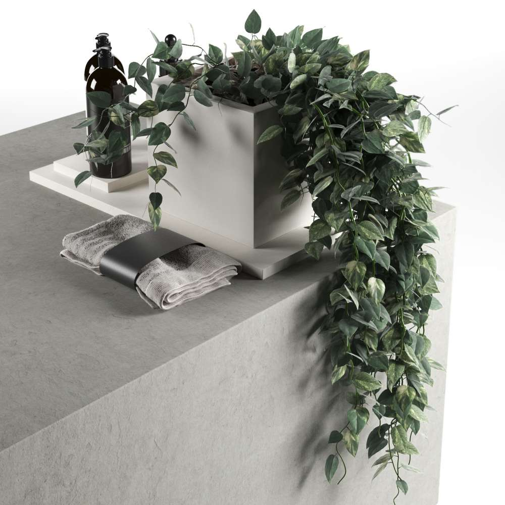 Plants with Body Care Products and Towel 3d model