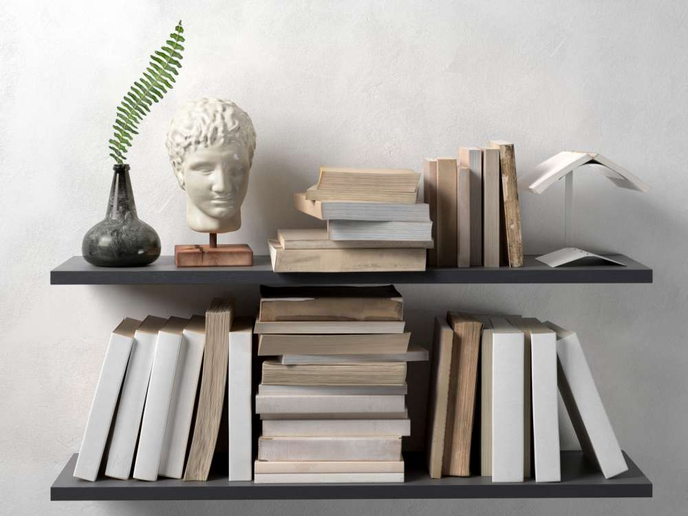 Shelf with Books, Plant and Head Sculpture 3d model