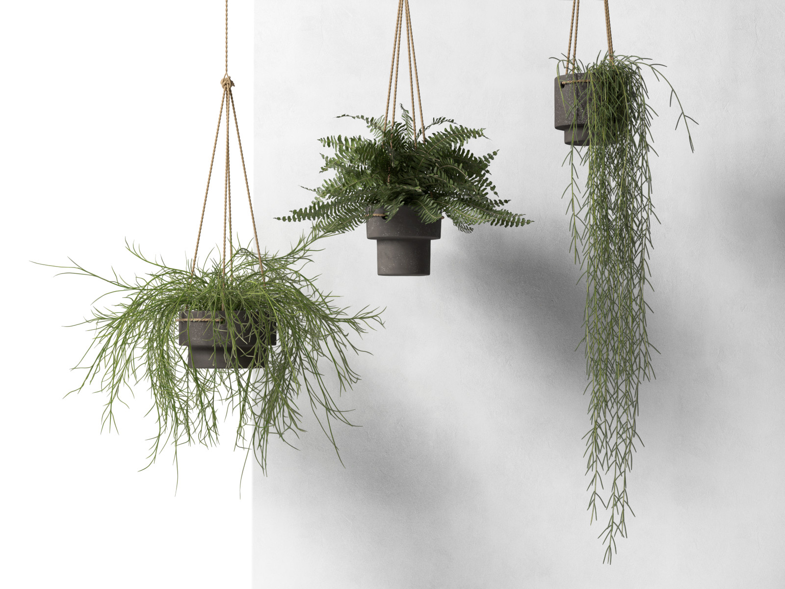 hanging pots with plants. Black Bedroom Furniture Sets. Home Design Ideas