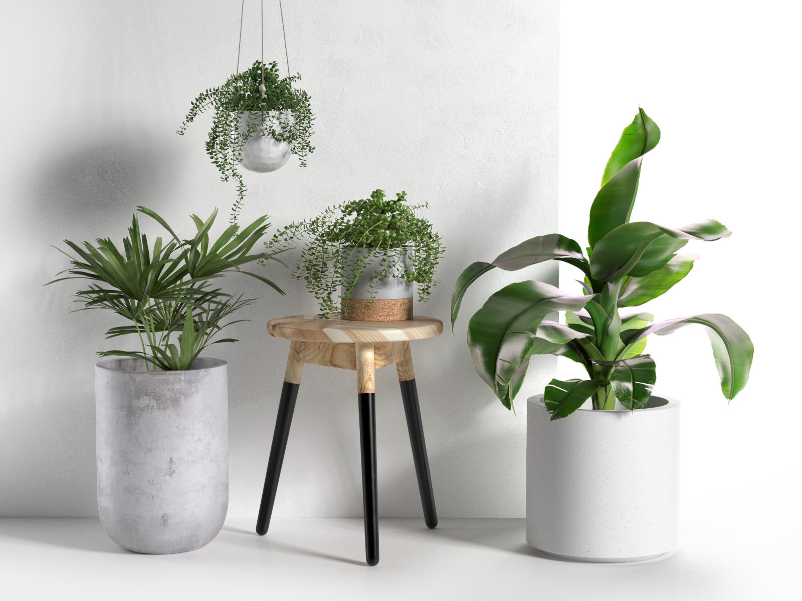 Stool and pots with plants for Plant de pot exterieur