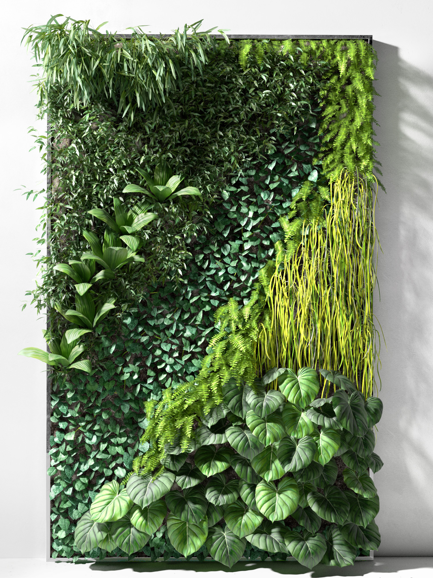 Vertical Garden Collection- Vertical Garden Collectionfor